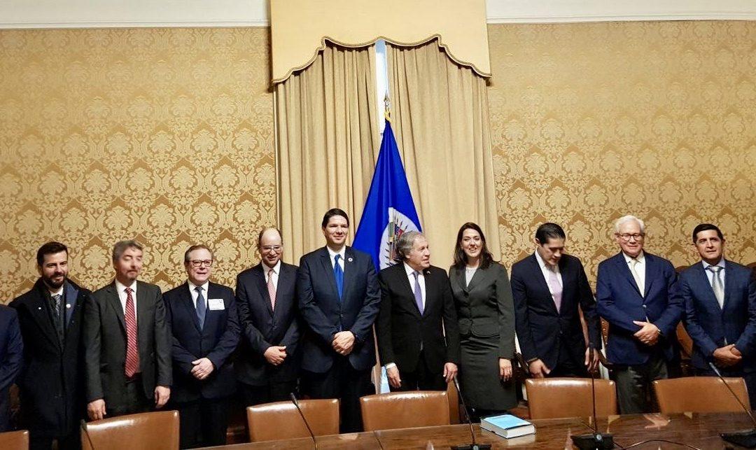 Secretario General de la OEA destaca la importancia de tener instituciones sólidas, para garantizar la democracia y la libertad