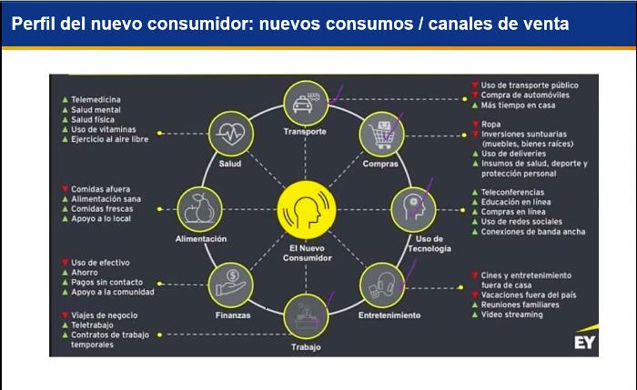 Webinar: Oportunidades de negocios y nuevos ingresos en época de Covid-19